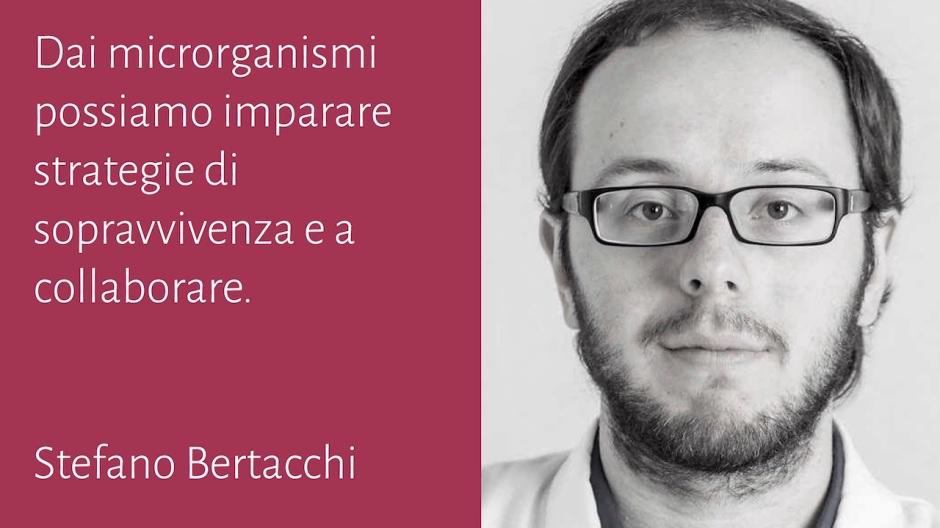 Stefano Bertacchi